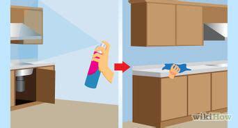 moucherons dans la cuisine comment vous débarrasser des mites alimentaires