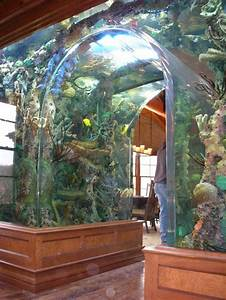 cool fish tanks vegas - of the World's Coolest Aquariums ...