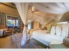 Kambaku Safari Lodge saf03870 Kambaku Safari Lodge