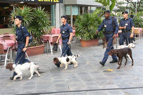 police   unit singapore wikipedia