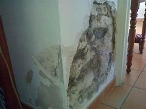 Probleme D Humidite Mur Interieur : humidit lutter contre les remont es capillaires ~ Melissatoandfro.com Idées de Décoration