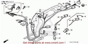 Honda Sh75 Scoopy 1987 Spain Wire Harness