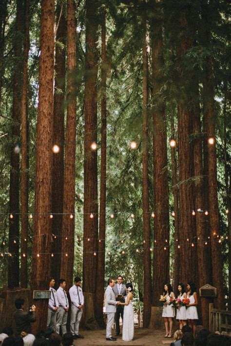 inspired ideas   whimsical forest wedding