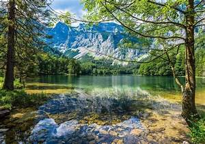 Landscape, Mountains, Forest, River, Spring, Wallpapers, Hd
