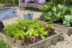 Carre De Jardin Potager : comment faire un mini potager guide 4 chapitres ~ Premium-room.com Idées de Décoration