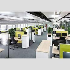 Das Gesunde Büro Zukunftsweisendes Openspacekonzept Für