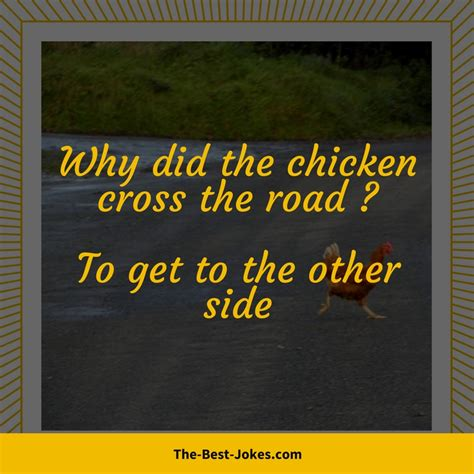 Why Did The Chicken Cross The Road Jokes Hilarious
