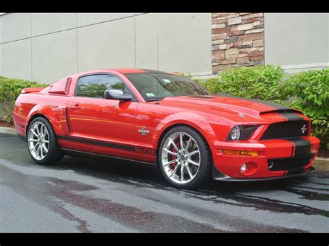 2008 Ford Mustang Gt500 by 2008 Ford Mustang Gt500 Shelby Snake
