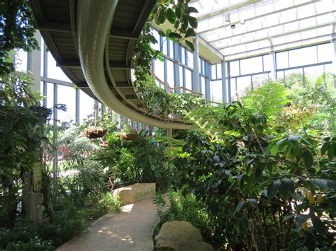 discovery gardens dallas butterfly house path below elevated path 187