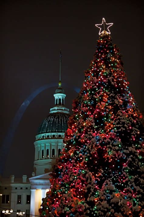 9 best discover christmas traditions images on pinterest