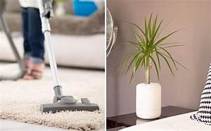 Assainir L Air De La Maison : 8 fa ons de purifier l 39 air de sa maison ~ Zukunftsfamilie.com Idées de Décoration