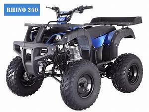 Rhino 250 Manual Atv With Reverse  U2013 Turbopowersports Com