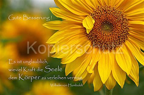 es ist unglaublich gute besserung sonnenblumen www