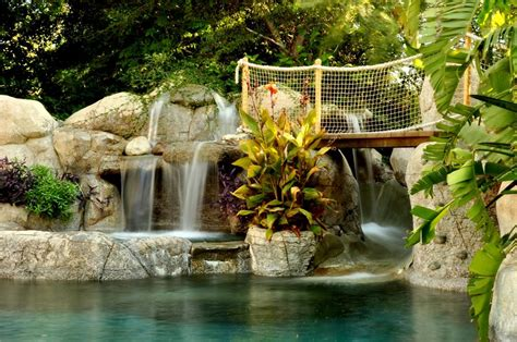 tropical pool landscaping tropical landscaping ideas landscaping network