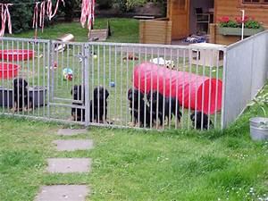 Kleiner Zaun Für Hunde : hovawart unsere aufzucht ~ Frokenaadalensverden.com Haus und Dekorationen