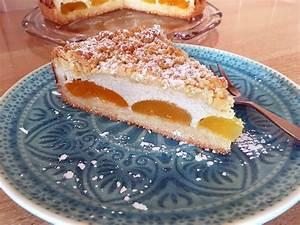 Vegane Rezepte Kuchen : aprikosen quark kuchen vegane naschkatzen ~ Frokenaadalensverden.com Haus und Dekorationen