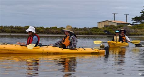 Canoes Adelaide by Canoe The Coorong Adelaide