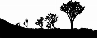 Silhouette Joshua Clipart Desert Tree Landscape Svg
