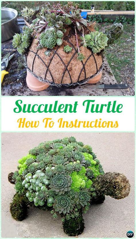 diy indoor  outdoor succulent planter ideas