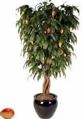 Planter Noyau Mangue : faire une fontaine en bambou plan de montage d un shishi ~ Melissatoandfro.com Idées de Décoration