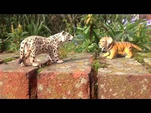 Leopard Vs Tiger | www.pixshark.com - Images Galleries ...