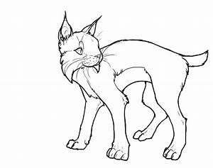 Bobcat Lineart By Basiliskzero On Deviantart