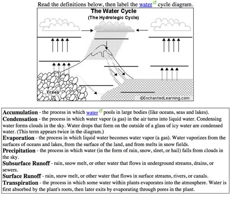 The Water Cycle Diagram Pdf by Grade Water Cycle Diagram The Best Worksheets Image