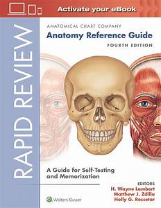 Pdf  Rapid Review  Anatomy Reference Guide  4th Edition