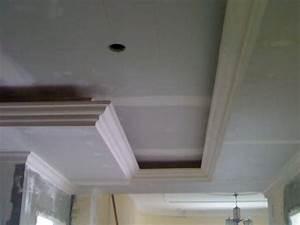 Pose D Un Faux Plafond En Ba13 : decoration faux plafond ba13 ~ Melissatoandfro.com Idées de Décoration