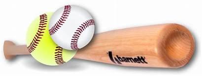 Softball Baseball Registration Welcome Fall