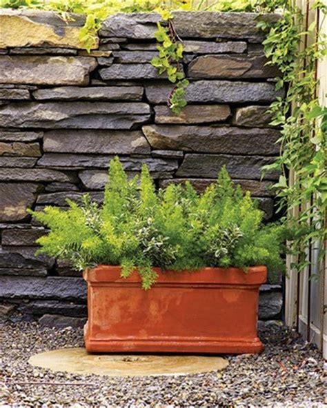 Algunos Consejos Para Diseñar Un Jardín  Cuidado De Plantas
