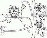 Coloring Owl Pages Cartoon Popular sketch template