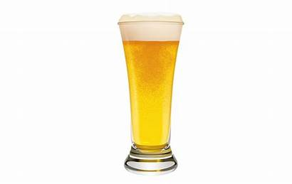 Beer Glass Clip Draft Clipart Cliparts Beverage