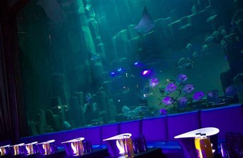 l aquarium club sortir 224 pour la st sylvestre