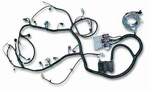 Ls2 Lh6 24x Stand Alone Engine Harness For E40 Ecu