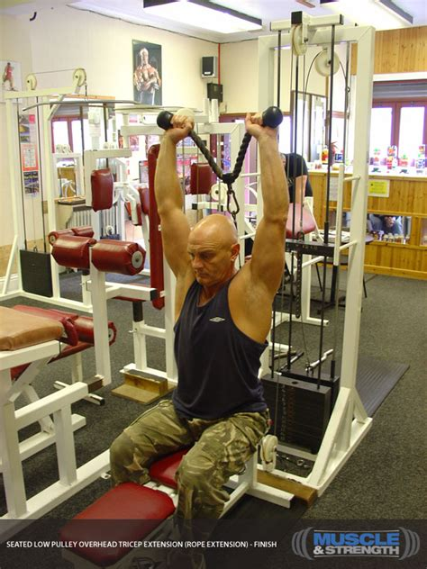 seated  pulley overhead tricep extension rope
