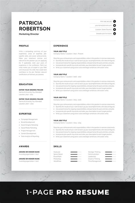 Set Resume Template by Professional Resume Template Set With One Page And Two