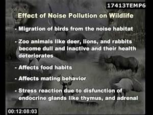 Noise Environmental