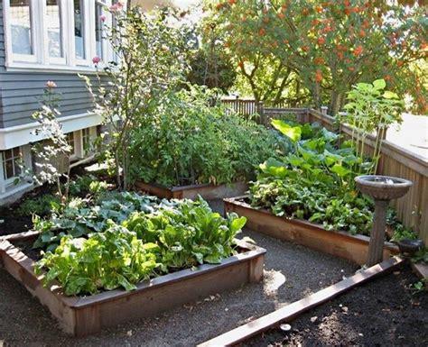 northwest garden ideas northwest backyard landscape ideas northwest botanicals inc seattle landscape design and