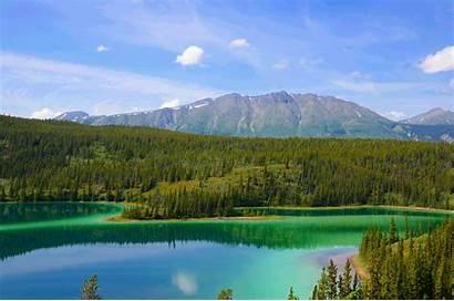 America North Wildlife Cruises Itineraries Soon Coming
