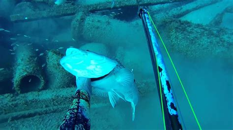 spearfishing grouper florida south