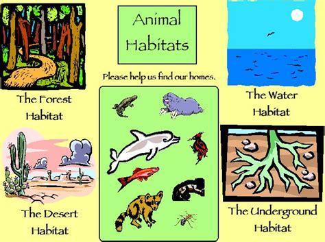 animal habitats for the classroom animal