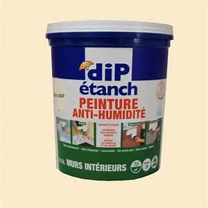Blanc Cassé Peinture : peinture anti humidit dip etanch blanc cass satin pas ~ Melissatoandfro.com Idées de Décoration