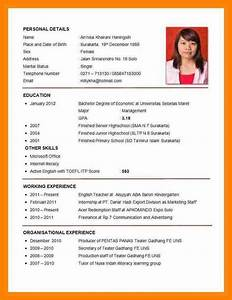 8 example of cv for job application pdf bike friendly With simple resume app