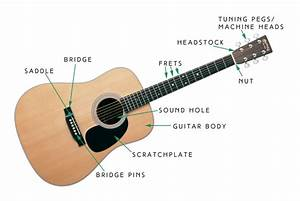 Parts Of Acoustic Guitar Body