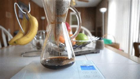 See more ideas about coffee gif, coffee, good morning coffee. Coffee GIF - Find & Share on GIPHY