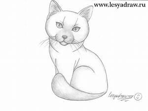 Zeichnungen Mit Bleistift Für Anfänger : wie die katze vom bleistift zu zeichnen ist es f r die anf nger stufenweise ~ Frokenaadalensverden.com Haus und Dekorationen