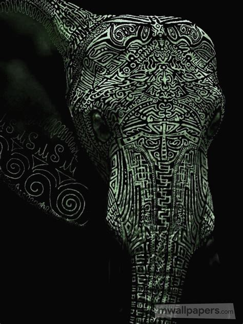 elephant  hd photoswallpapers