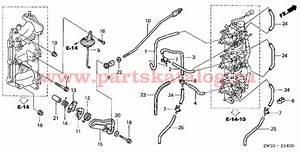 Honda Bf50 Parts Diagram