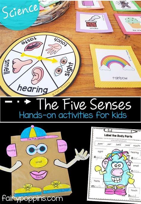 senses activities  kids  images preschool